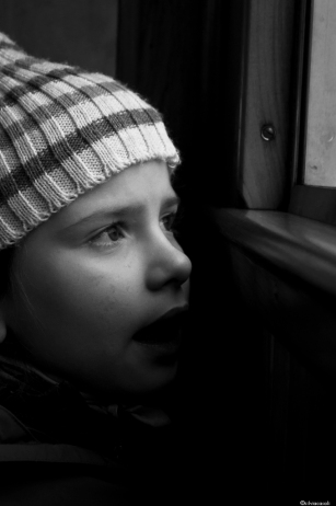 matilde on the train in the forest-1