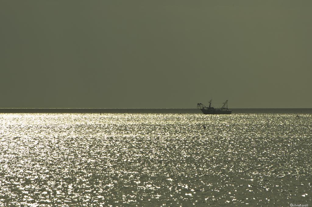 Riccione silvia casali photography 2012-1089