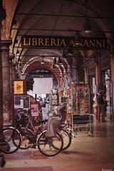 Bologna la dotta 2013-12