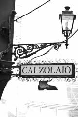 Bologna la dotta 2013-14