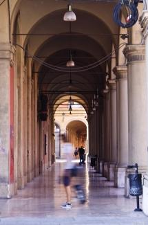 Bologna la dotta 2013-4