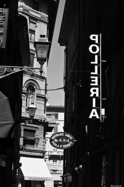 Bologna la dotta 2013-8