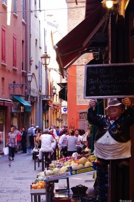 Bologna la dotta 2013-9